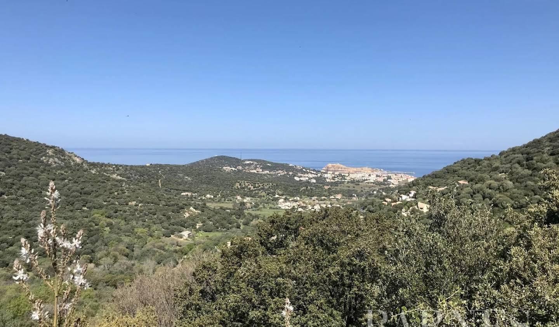 Terrain avec vue panoramique L'Ile-Rousse