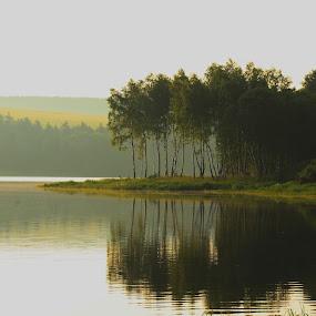 Přísečnice  by Jarka Hk - Landscapes Waterscapes ( photo, tank, trees, water, mirrored reflections, landscape, morning )