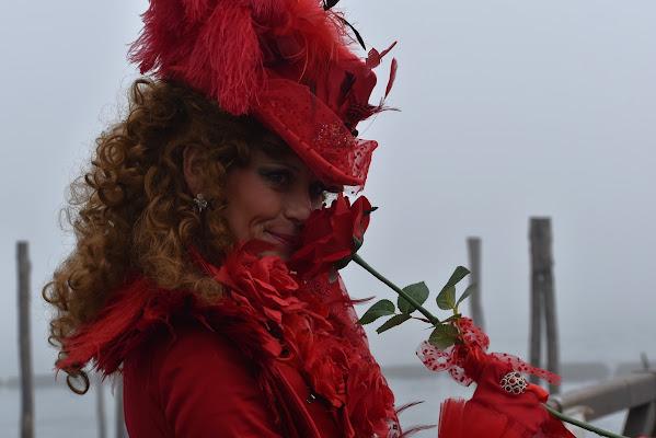 il profumo di una rosa rossa di renzo brazzolotto