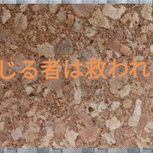 セレナ C27のカスタム事例画像 N君さんの2020年10月06日12:58の投稿