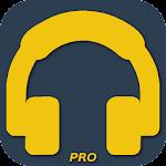 Bass Booster Pro v1.2-pro