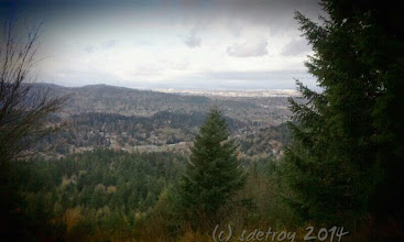 Photo: I am grateful to be able to hike and see the view.