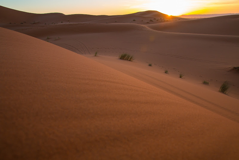 Sahara di Alessio Zampetti