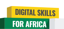 Home - Digital Skills for Africa