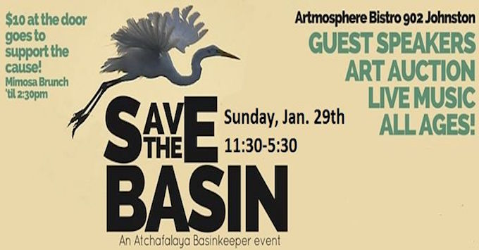 Save the Basin banner 2017.jpg
