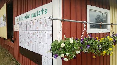 Photo: Käytiin Kultapellon puutarhalla ostoksilla