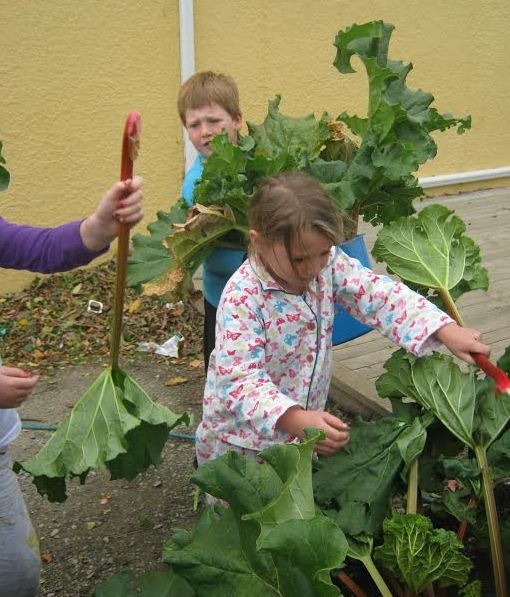 Rhubarb Crumble 2.jpg