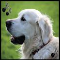 Dog ringtones free, dog sounds icon