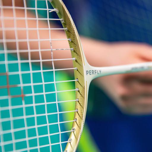 Badminton Amical