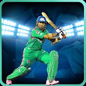 Top Cricket Games 2015