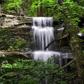 Burden Falls by Ty Shults - Landscapes Waterscapes ( water, boulders, cliffs, green, lush, waterfall, forest, leaves, tranquil, peace, summer, trees, rocks,  )