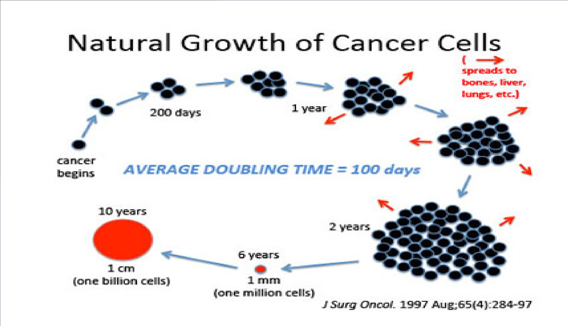How Fast Does Cancer Grow?