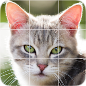 Animals Puzzle: Cats