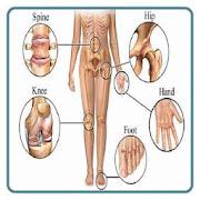 Clinical Orthopaedics Surgery