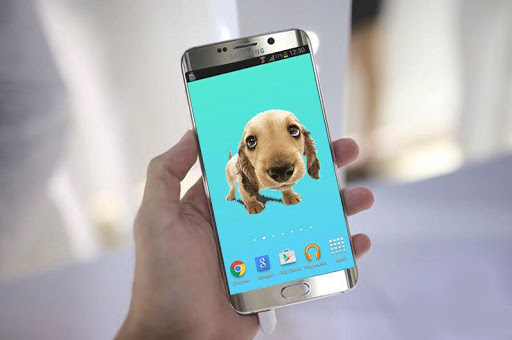 Cute Baby Dog Live Wallpaper