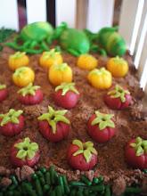 Photo: Tomatoes & watermelon