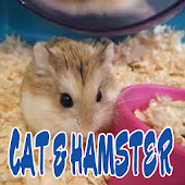 Cat and Hamster Lovers