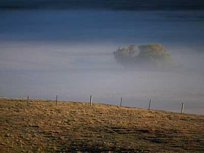 mist400-2.jpg