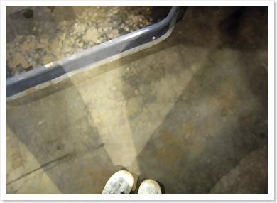 shadows - gas station feet