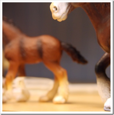 Brown ~ Toy Horses
