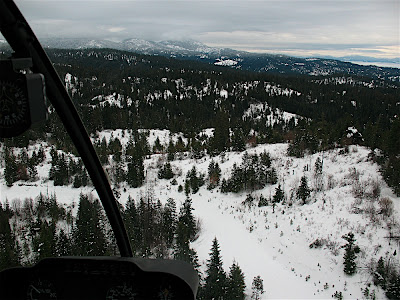 Winter Flying Picture in the Mountains