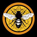 Hive Tarot icon