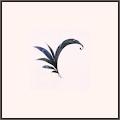 R-花香の羽