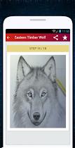 Wolf Drawing - screenshot thumbnail 08