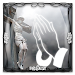 Christian Picture Frames Icon