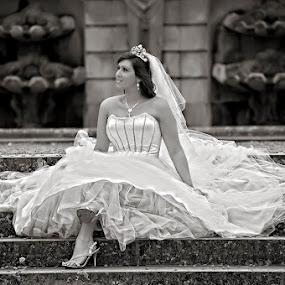 by Will Perrin - Wedding Bride