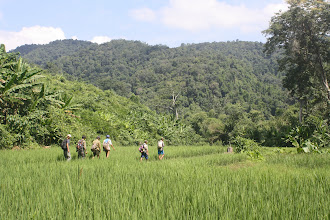 Photo: Trek through the field visit Nam Ha NPA-2 Days Green Trail Trek-Trekking in Luang Namtha, Laos