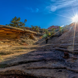 Canyonlands National Park by Kerry Perkins - Landscapes Deserts