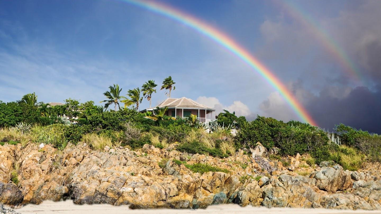 Watch Aloha Builds live