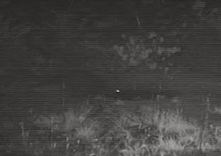 Photo: And a waterbuck in Luando E uma quissema no Luando