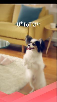 U+IoT맘카のおすすめ画像1