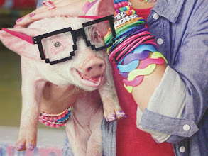 Photo: This is an ad for the new Claire's that is under construction in the mall.  This is a pig with painted nails and pixelated glasses on its head.  This is madness :)