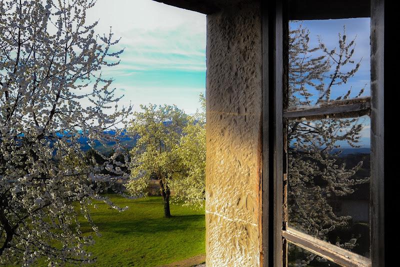 uno sguardo attraverso la finestra di Winterthur58