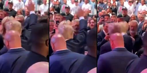 Mel Gibson Seen Saluting Donald Trump at UFC Fight [Video]