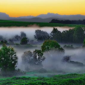 Early morning mist along a horseshoe bend stream by Glenn Visser - Landscapes Mountains & Hills ( mountains, trees, sunrise, morning, early, mist )
