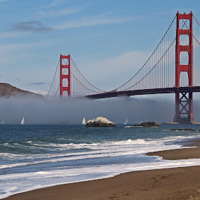 Serpentine Fog, Golden Gate Bridge, San Francisco by Arvind Mallya - Buildings & Architecture Bridges & Suspended Structures ( serpentine, golden gate bridge, fog, san francisco,  )