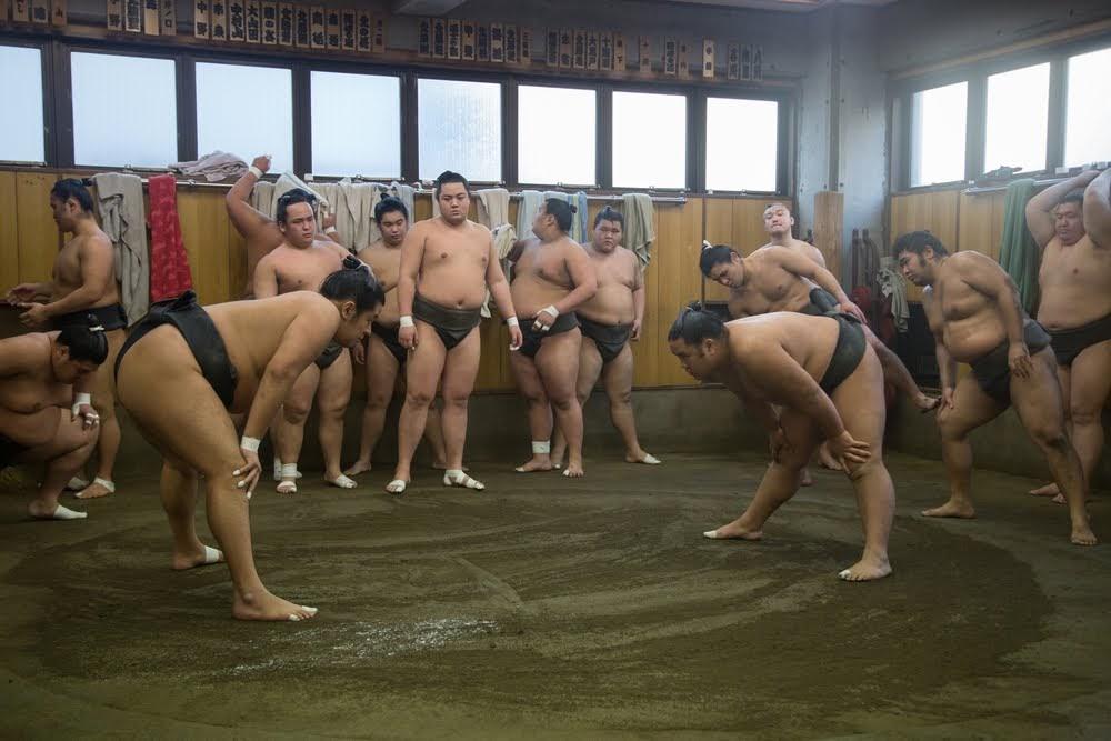 entrenamiento sumo Heya Stable