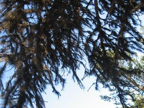 Photo: Enontekiöllä on Euroopan puhtain ilma