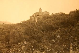 Photo: fine 1800 (foto Benigni); in primo piano le rose coburgo