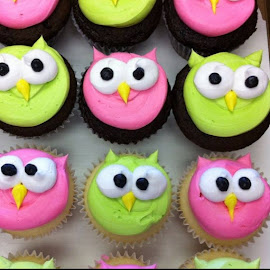 Owl Cup cakes by Janet Skoyles - Food & Drink Cooking & Baking (  )