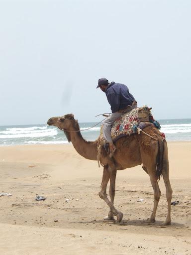 l'hospitalité marocaine DSCF7323