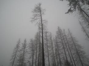 Photo: Początki podejścia w gęstej mgle.