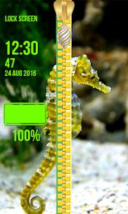 Zámek obrazovky - mořské tvory - náhled