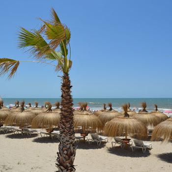 hamacs de plage onhotel vent