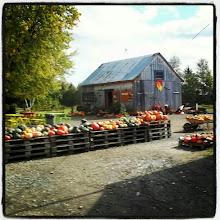 Photo: #Lanaudière #LaCourgerie #Québec #Canada #Halloween