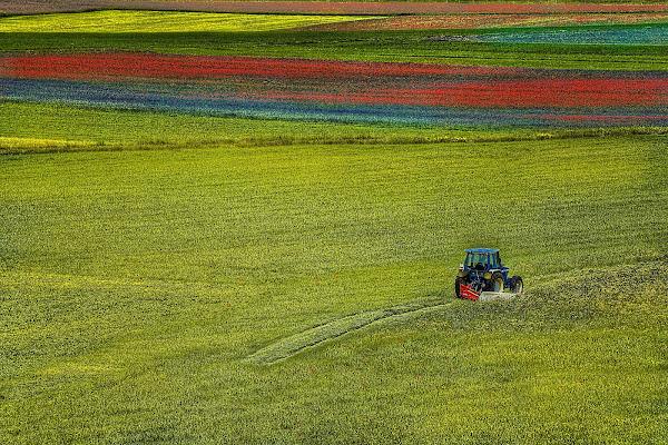 Lavoro di primavera